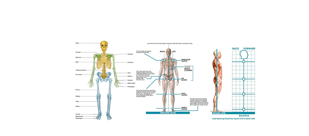 posture-therapy-2